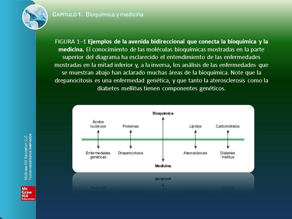 FIGURA 1–1 Ejemplos de la avenida bidireccional que conecta la bioquímica y la medicina. El conocimiento de las moléculas bioquímicas mostradas en la