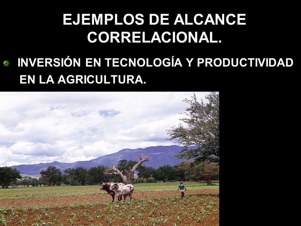 INVERSIÓN EN TECNOLOGÍA Y PRODUCTIVIDAD EN LA AGRICULTURA.