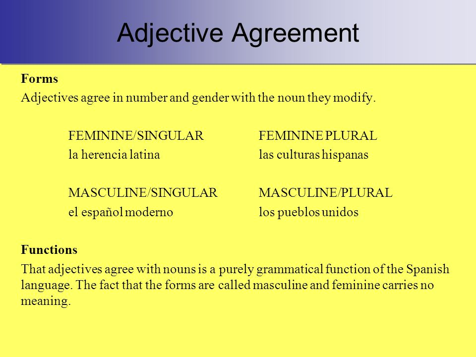 Adjective Agreement Forms Adjectives agree in number and gender with the noun they modify. FEMININE/SINGULARFEMININE PLURAL la herencia latinalas cult