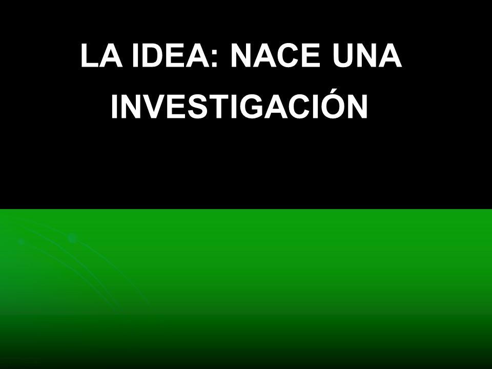 LA IDEA: NACE UNA INVESTIGACIÓN