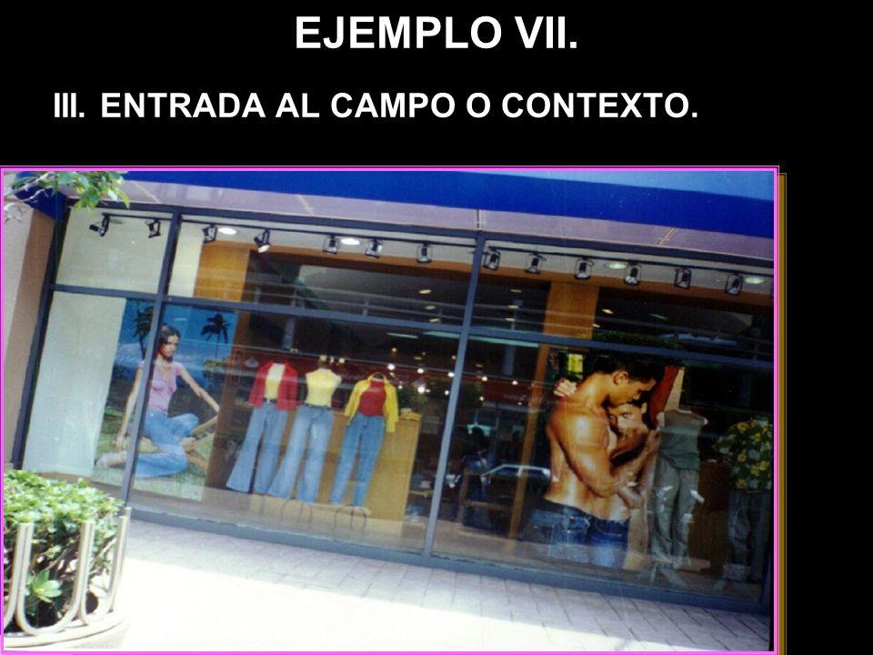 EJEMPLO VII. III. ENTRADA AL CAMPO O CONTEXTO.