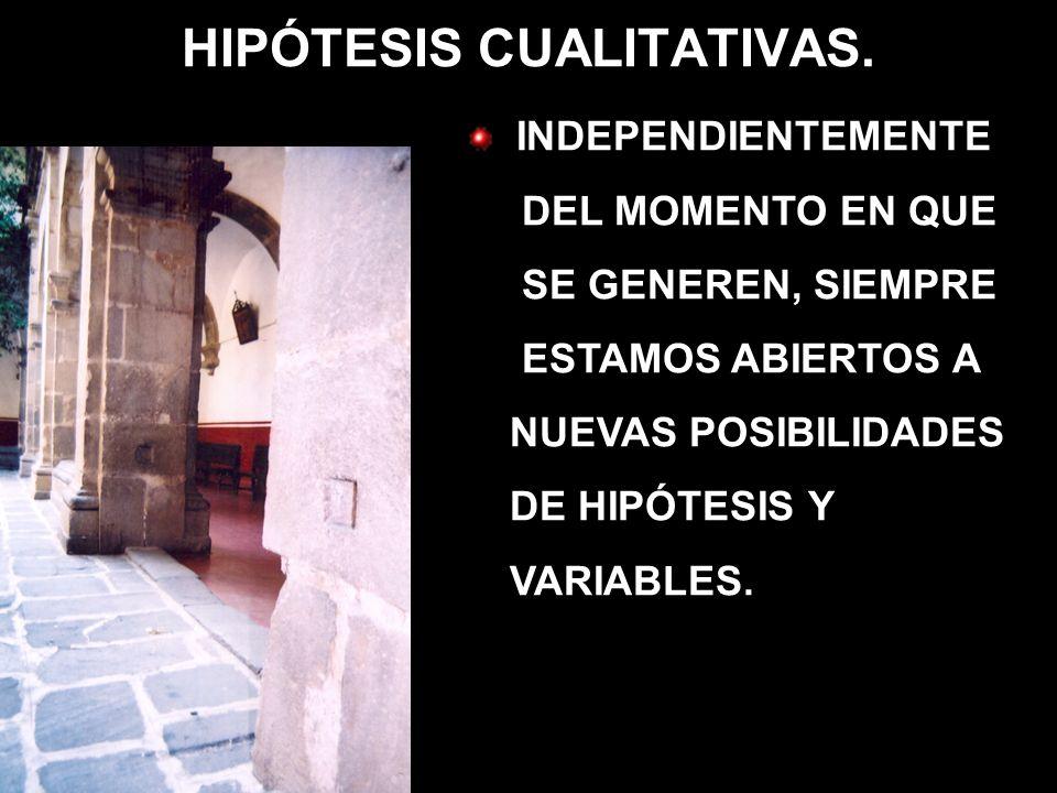 MUESTRAS CUALITATIVAS.LA MUESTRA DE CASOS-TIPO.