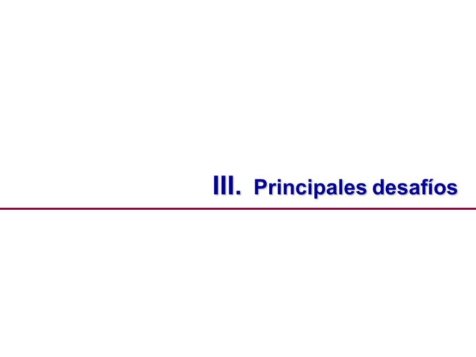 III. Principales desafíos