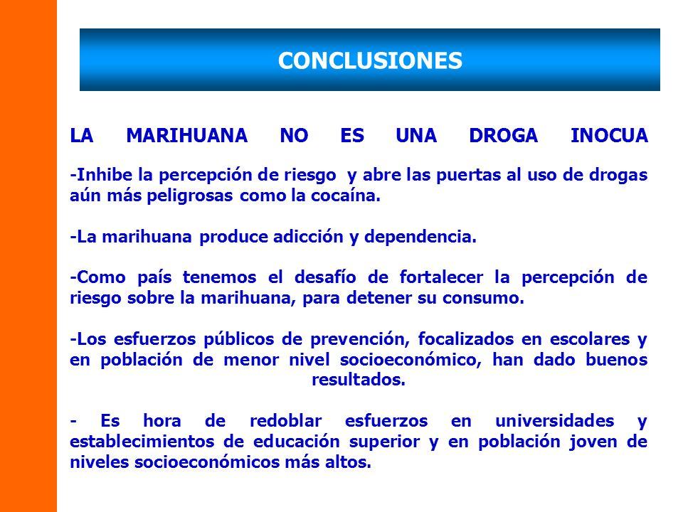 CONCLUSIONES LA MARIHUANA NO ES UNA DROGA INOCUA -Inhibe la percepción de riesgo y abre las puertas al uso de drogas aún más peligrosas como la cocaína.