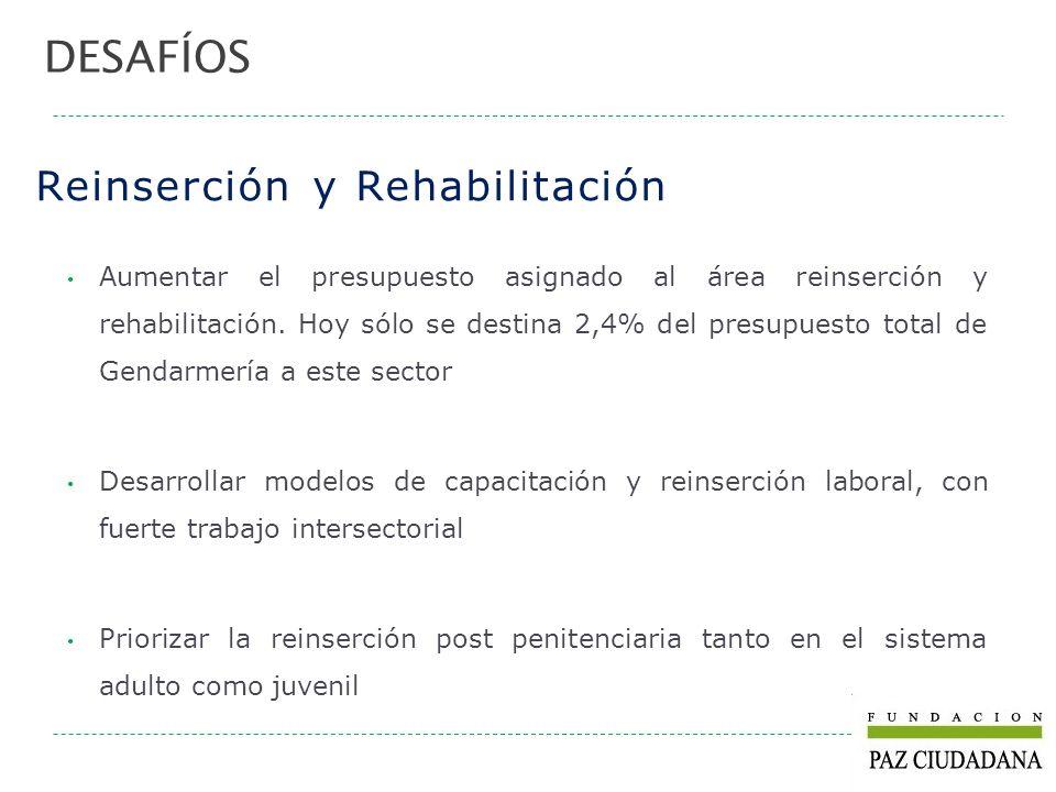 Reinserción y Rehabilitación Aumentar el presupuesto asignado al área reinserción y rehabilitación. Hoy sólo se destina 2,4% del presupuesto total de