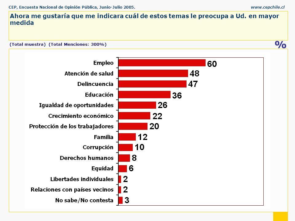 CEP, Encuesta Nacional de Opinión Pública, Junio-Julio 2005.www.cepchile.cl % Ahora me gustaría que me indicara cuál de estos temas le preocupa a Ud.