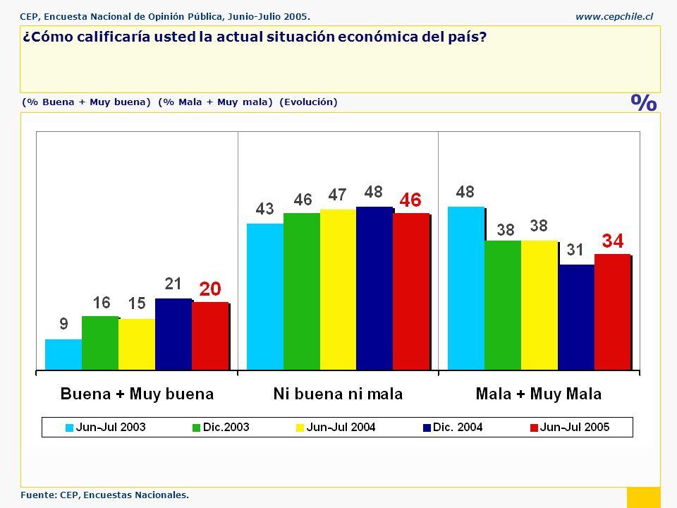 CEP, Encuesta Nacional de Opinión Pública, Junio-Julio 2005.www.cepchile.cl % ¿Cómo calificaría usted la actual situación económica del país.