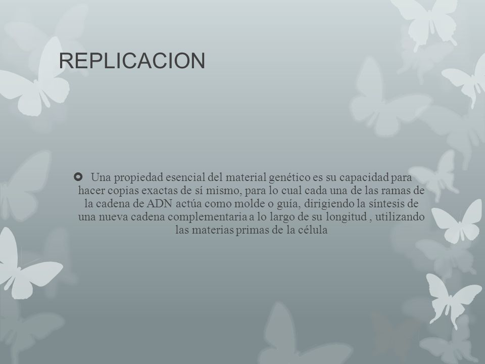REPLICACION Una propiedad esencial del material genético es su capacidad para hacer copias exactas de sí mismo, para lo cual cada una de las ramas de