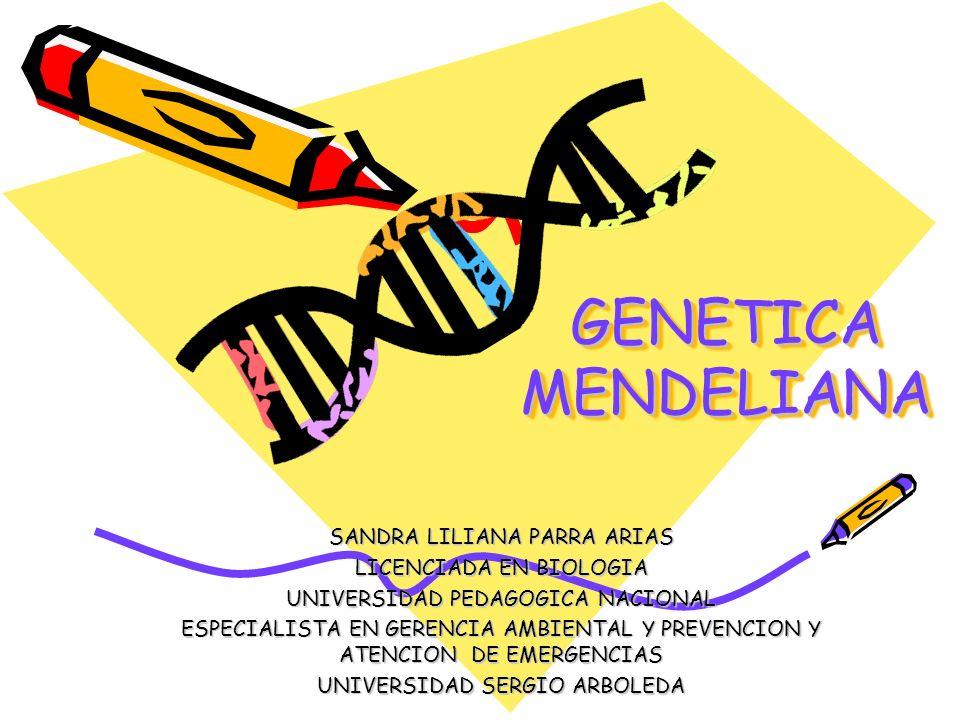GENETICA MENDELIANA SANDRA LILIANA PARRA ARIAS LICENCIADA EN BIOLOGIA UNIVERSIDAD PEDAGOGICA NACIONAL ESPECIALISTA EN GERENCIA AMBIENTAL Y PREVENCION