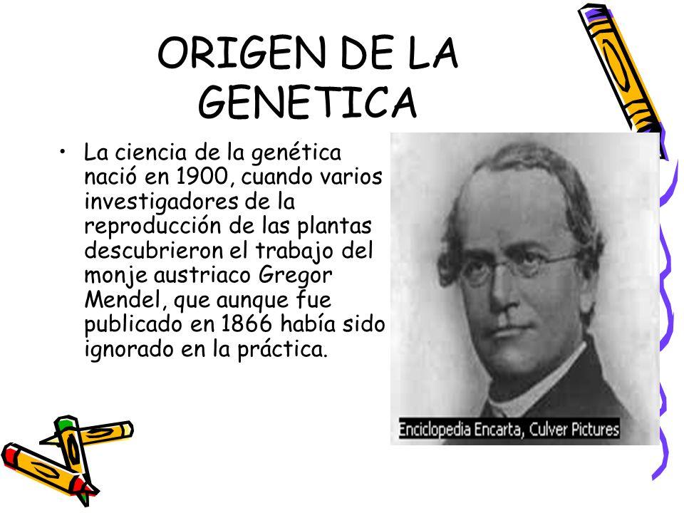 ORIGEN DE LA GENETICA La ciencia de la genética nació en 1900, cuando varios investigadores de la reproducción de las plantas descubrieron el trabajo