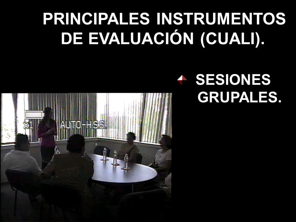 PRINCIPALES INSTRUMENTOS DE EVALUACIÓN (CUALI). SESIONES GRUPALES.