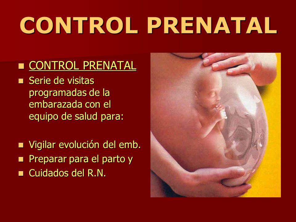 CONTROL PRENATAL CONTROL PRENATAL CONTROL PRENATAL Serie de visitas programadas de la embarazada con el equipo de salud para: Serie de visitas program