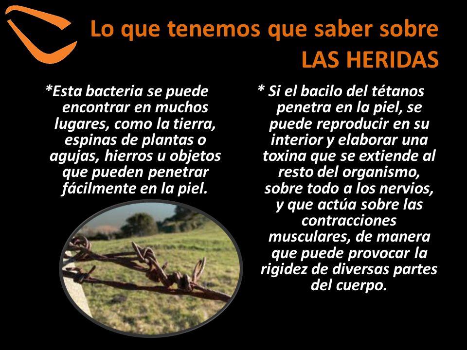 Lo que tenemos que saber sobre LAS HERIDAS *Esta bacteria se puede encontrar en muchos lugares, como la tierra, espinas de plantas o agujas, hierros u
