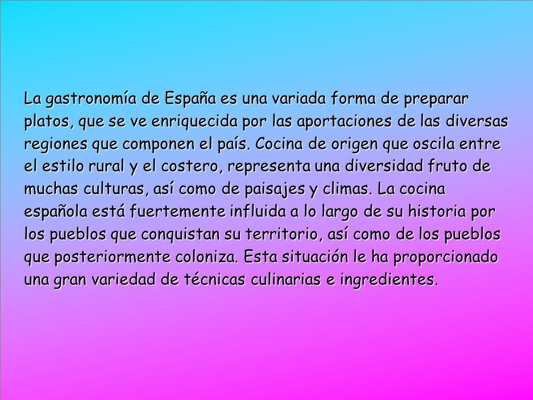 El concepto tan variado de la cocina hace que algunos autores la denominen en plural, como las «cocinas de España».