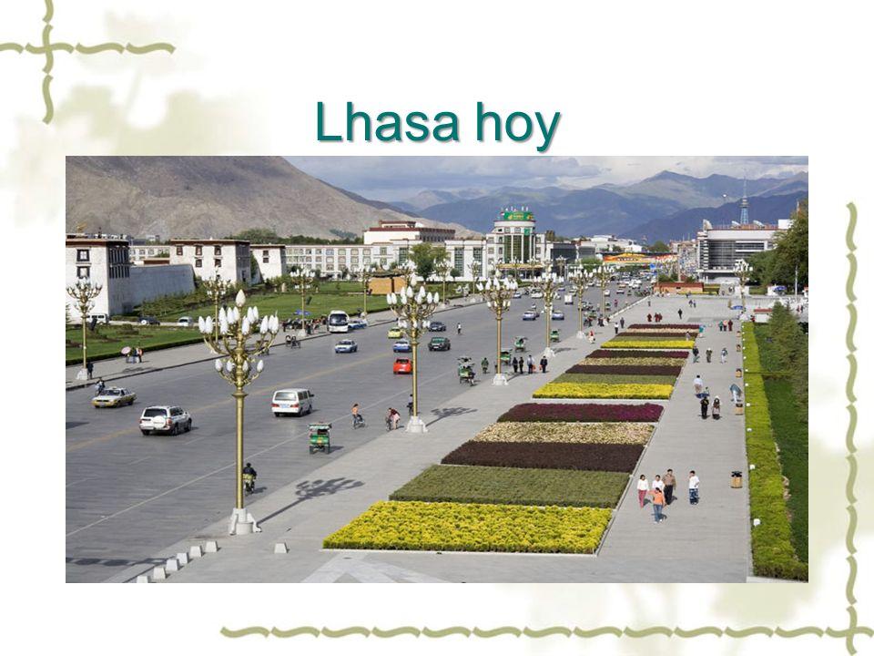Lhasa hoy