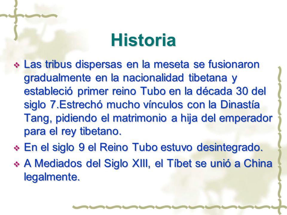 Historia Las tribus dispersas en la meseta se fusionaron gradualmente en la nacionalidad tibetana y estableció primer reino Tubo en la década 30 del s