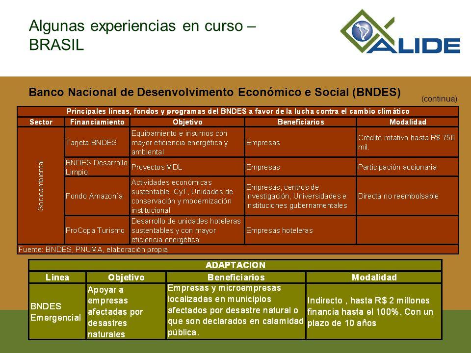 Asociación Latinoamericana de Instituciones Financieras para el Desarrollo Algunas experiencias en curso – BRASIL Banco Nacional de Desenvolvimento Ec