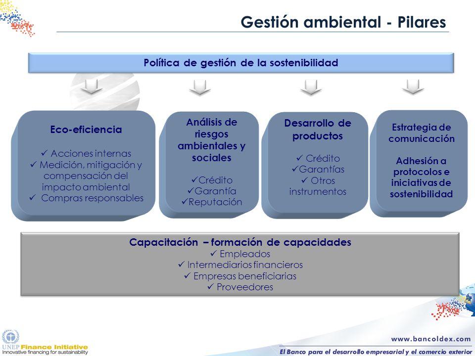 Gestión ambiental - Pilares Desarrollo de productos Crédito Garantías Otros instrumentos Eco-eficiencia Acciones internas Medición, mitigación y compe