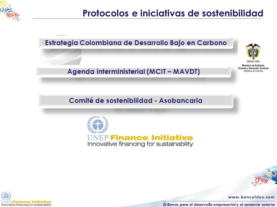 Protocolos e iniciativas de sostenibilidad Estrategia Colombiana de Desarrollo Bajo en Carbono Agenda interministerial (MCIT – MAVDT) Comité de sosten