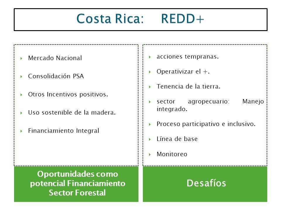 Tipo de Financiamiento Fuente Porcentaje % Tasas e impuestosNacional62,84 Mercado REDD+Nacional e internacional29, 14 Mercado VERsnacional e internaci