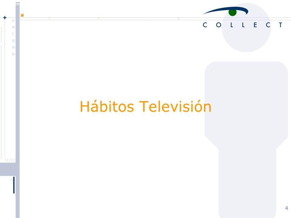 Agosto de 2004 MBT 4 Hábitos Televisión