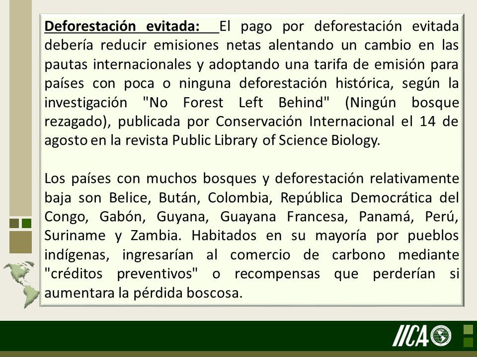 Deforestación evitada: El pago por deforestación evitada debería reducir emisiones netas alentando un cambio en las pautas internacionales y adoptando