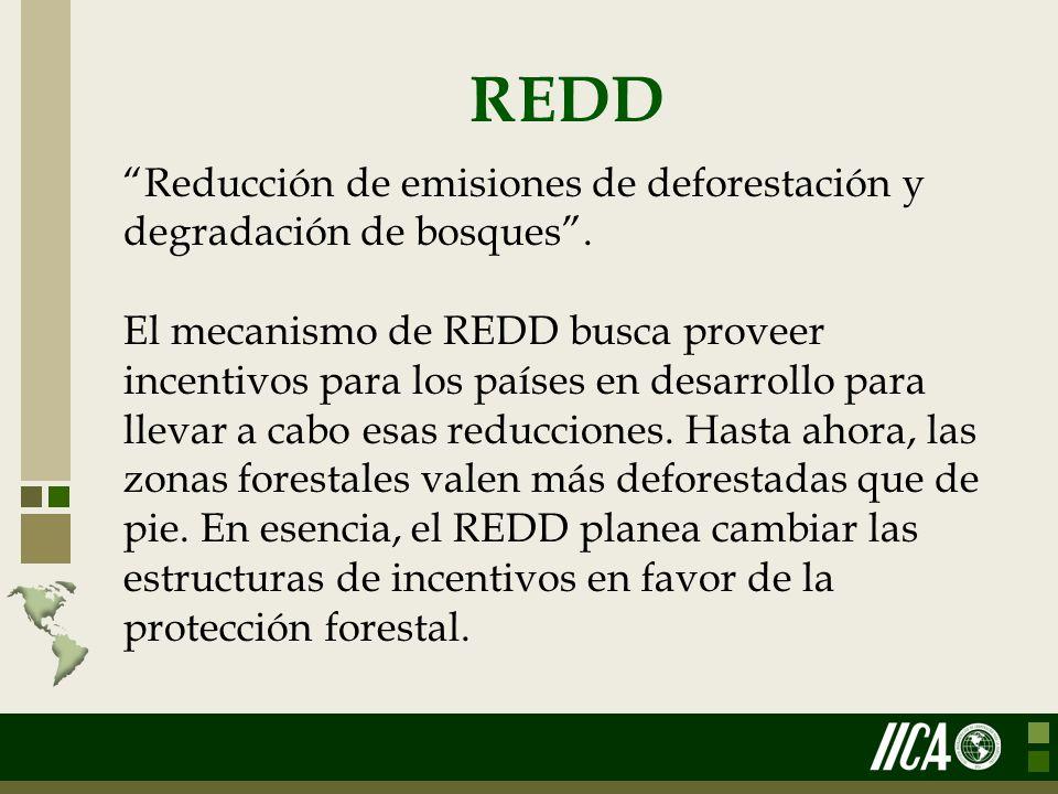 REDD Reducción de emisiones de deforestación y degradación de bosques. El mecanismo de REDD busca proveer incentivos para los países en desarrollo par