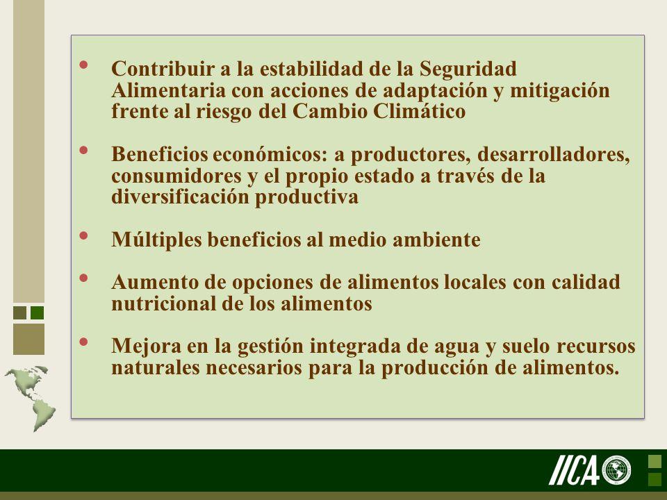 Contribuir a la estabilidad de la Seguridad Alimentaria con acciones de adaptación y mitigación frente al riesgo del Cambio Climático Beneficios econó