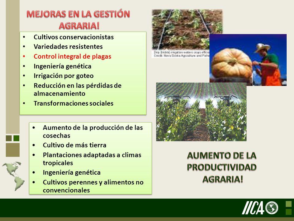 Cultivos conservacionistas Variedades resistentes Control integral de plagas Ingeniería genética Irrigación por goteo Reducción en las pérdidas de alm