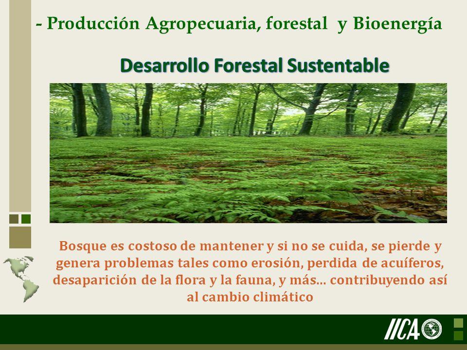 - Producción Agropecuaria, forestal y Bioenergía Bosque es costoso de mantener y si no se cuida, se pierde y genera problemas tales como erosión, perd