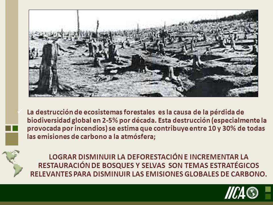 La destrucción de ecosistemas forestales es la causa de la pérdida de biodiversidad global en 2-5% por década. Esta destrucción (especialmente la prov