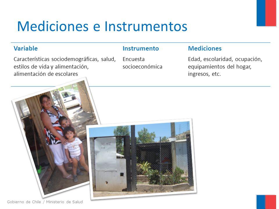 Gobierno de Chile / Ministerio de Salud Mediciones e Instrumentos VariableInstrumentoMediciones Características sociodemográficas, salud, estilos de v