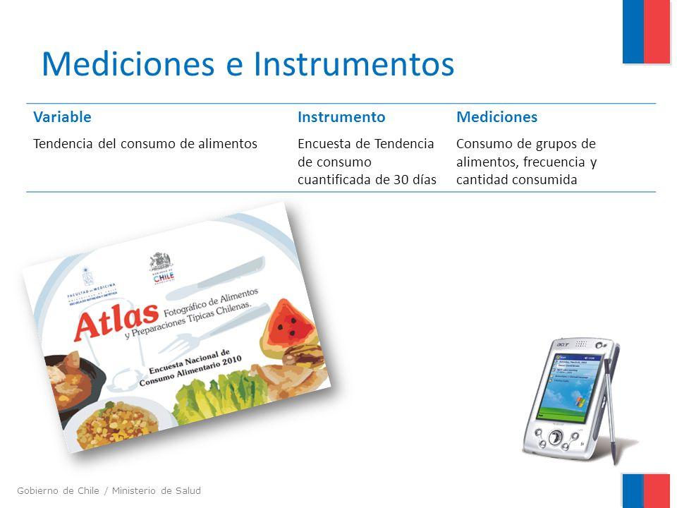Gobierno de Chile / Ministerio de Salud Mediciones e Instrumentos VariableInstrumentoMediciones Tendencia del consumo de alimentosEncuesta de Tendenci