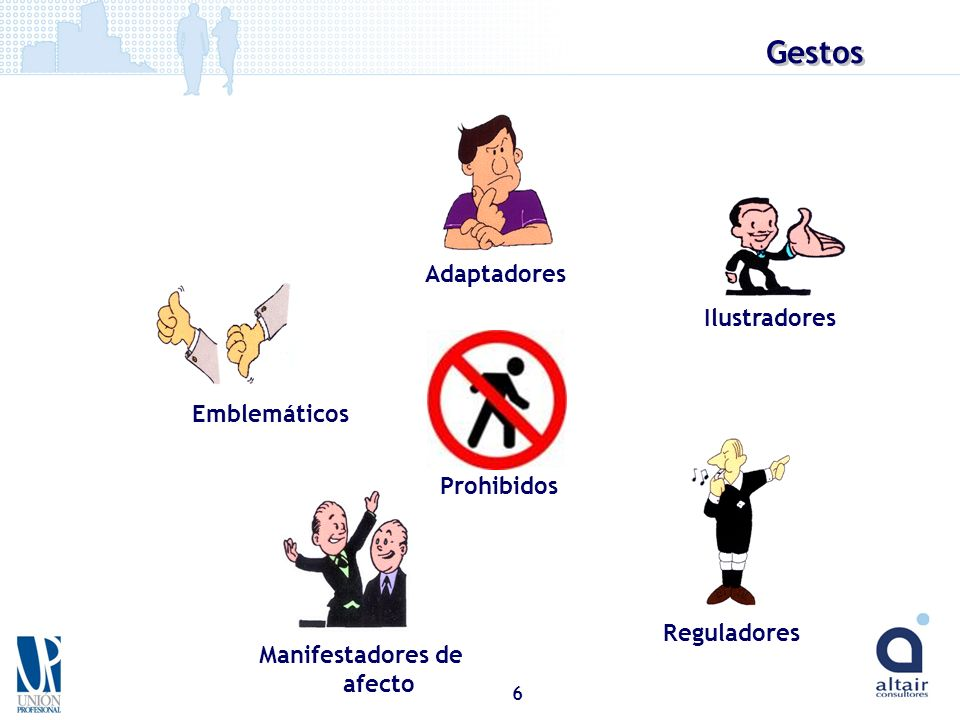 6 Emblemáticos Adaptadores Ilustradores Manifestadores de afecto Reguladores Prohibidos Gestos