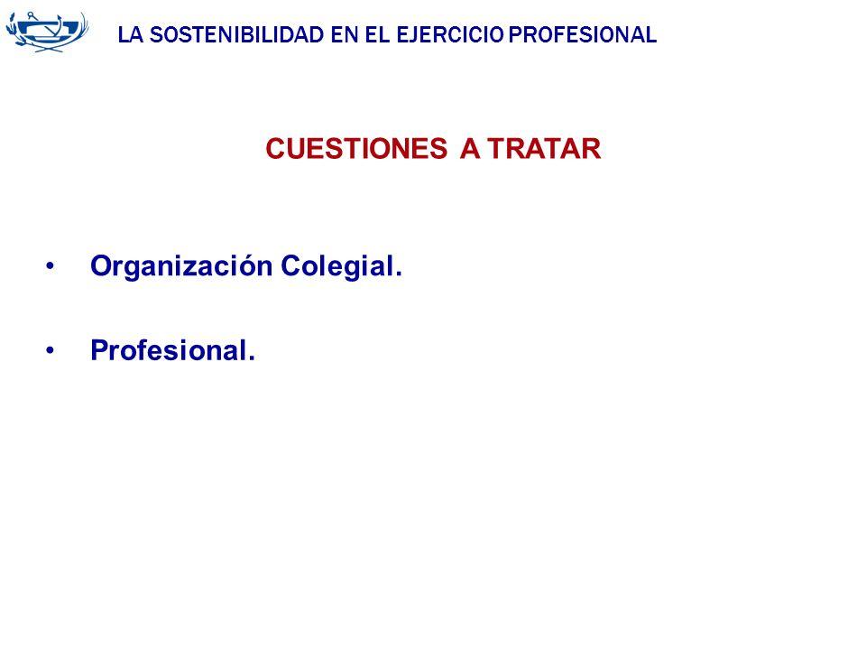 LA SOSTENIBILIDAD EN EL EJERCICIO PROFESIONAL ACUERDO DE LA INGENIERÍA 29/06/2007 Organización Colegial. CUESTIONES A TRATAR Profesional.