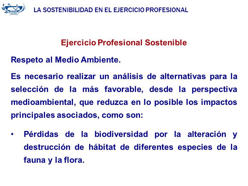 LA SOSTENIBILIDAD EN EL EJERCICIO PROFESIONAL ACUERDO DE LA INGENIERÍA 29/06/2007 Ejercicio Profesional Sostenible Respeto al Medio Ambiente. Es neces