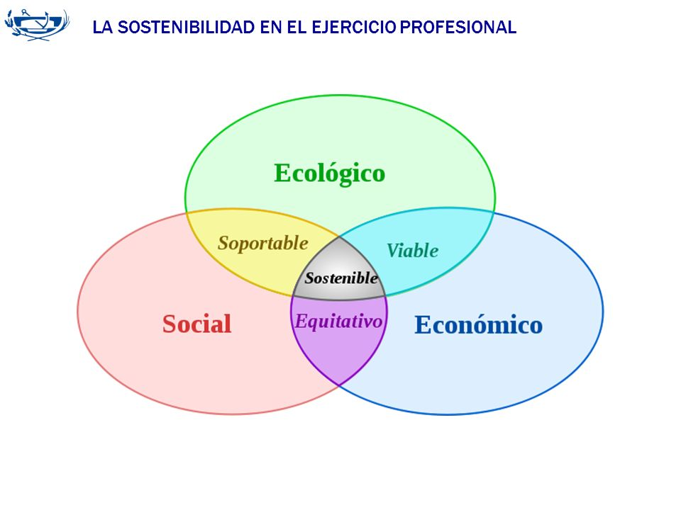 LA SOSTENIBILIDAD EN EL EJERCICIO PROFESIONAL