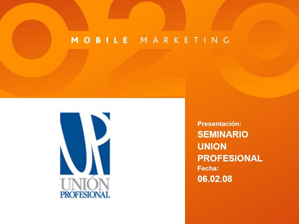 Presentación: SEMINARIO UNION PROFESIONAL Fecha: 06.02.08