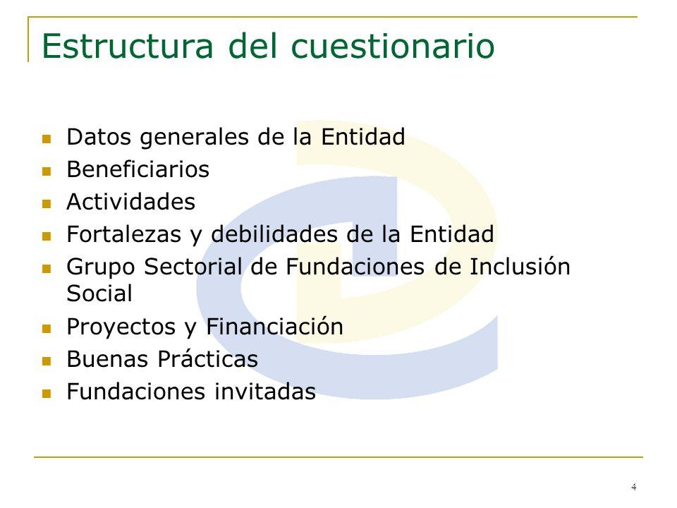 4 Estructura del cuestionario Datos generales de la Entidad Beneficiarios Actividades Fortalezas y debilidades de la Entidad Grupo Sectorial de Fundac