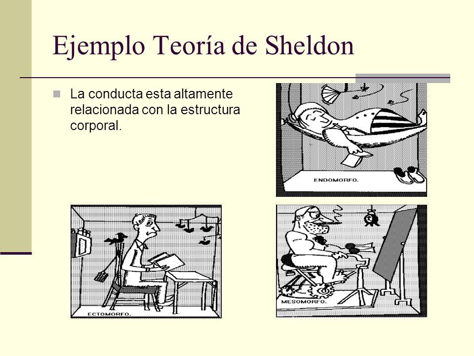 Ejemplo Teoría de Sheldon La conducta esta altamente relacionada con la estructura corporal.