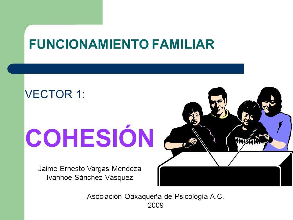 FUNCIONAMIENTO FAMILIAR VECTOR 1: COHESIÓN Jaime Ernesto Vargas Mendoza Ivanhoe Sánchez Vásquez Asociación Oaxaqueña de Psicología A.C. 2009