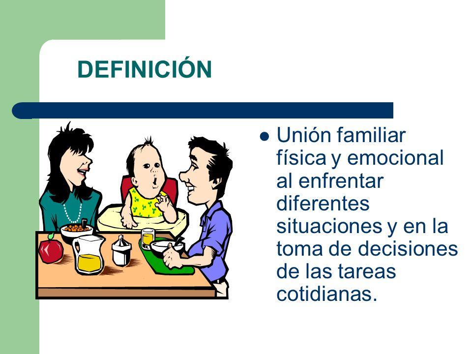 DEFINICIÓN Unión familiar física y emocional al enfrentar diferentes situaciones y en la toma de decisiones de las tareas cotidianas.
