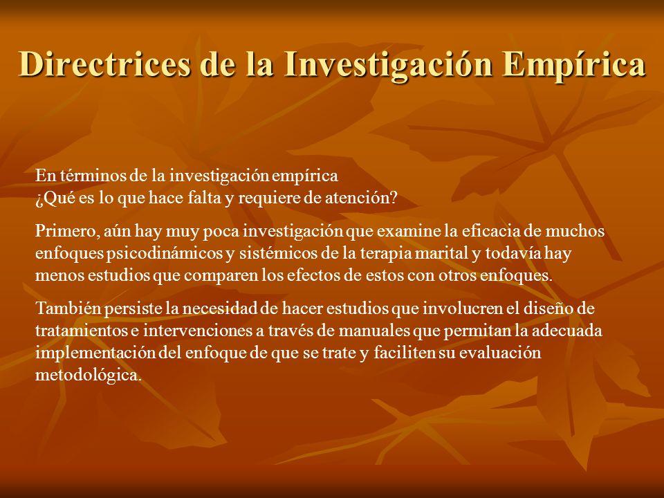 Directrices de la Investigación Empírica En términos de la investigación empírica ¿Qué es lo que hace falta y requiere de atención.