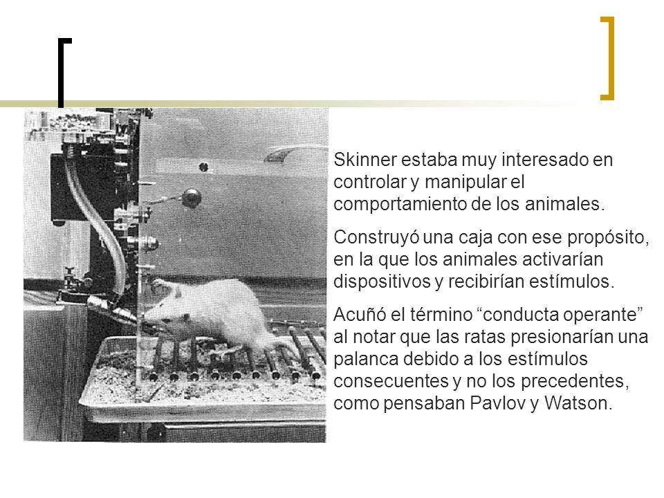Skinner estaba muy interesado en controlar y manipular el comportamiento de los animales. Construyó una caja con ese propósito, en la que los animales