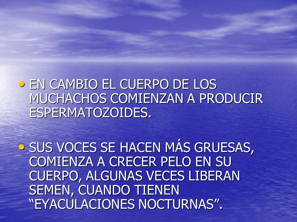 EN CAMBIO EL CUERPO DE LOS MUCHACHOS COMIENZAN A PRODUCIR ESPERMATOZOIDES. EN CAMBIO EL CUERPO DE LOS MUCHACHOS COMIENZAN A PRODUCIR ESPERMATOZOIDES.