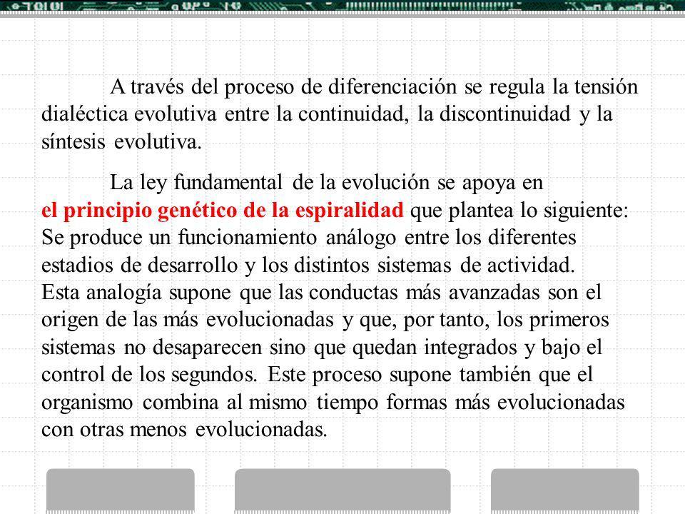 A través del proceso de diferenciación se regula la tensión dialéctica evolutiva entre la continuidad, la discontinuidad y la síntesis evolutiva. La l