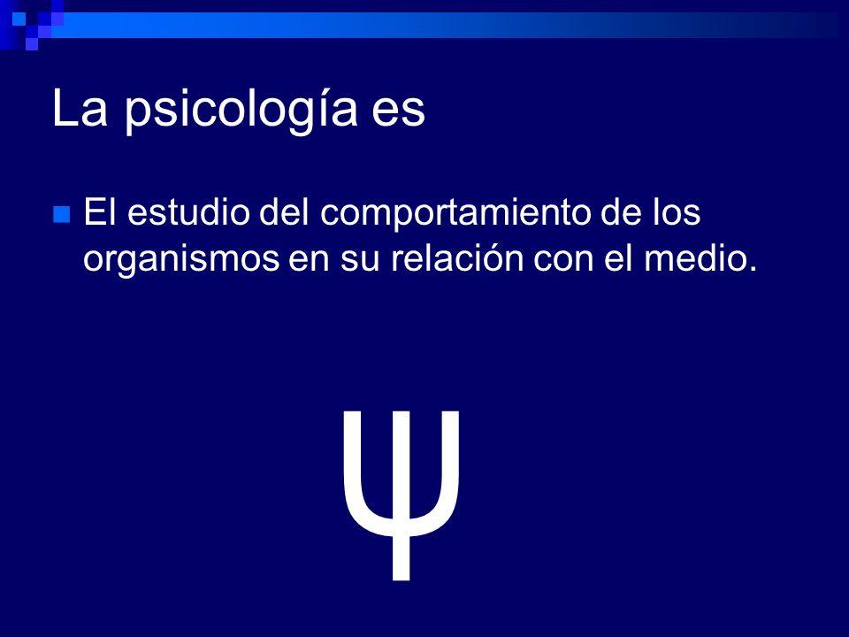 En la psicología aplicada Se utilizan los conocimientos obtenidos en el área básica a la solución de problemas A cada área se le pone nombre para hacer énfasis en el área de aplicación No son varias psicologías, es una sola disciplina.