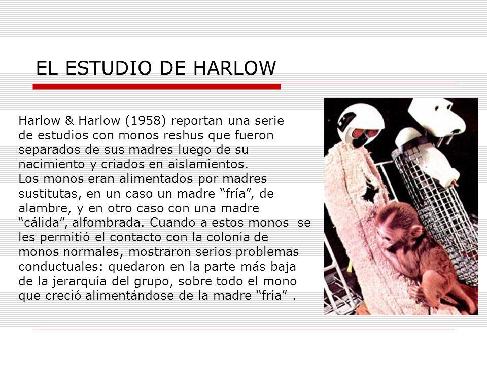EL ESTUDIO DE HARLOW Harlow & Harlow (1958) reportan una serie de estudios con monos reshus que fueron separados de sus madres luego de su nacimiento