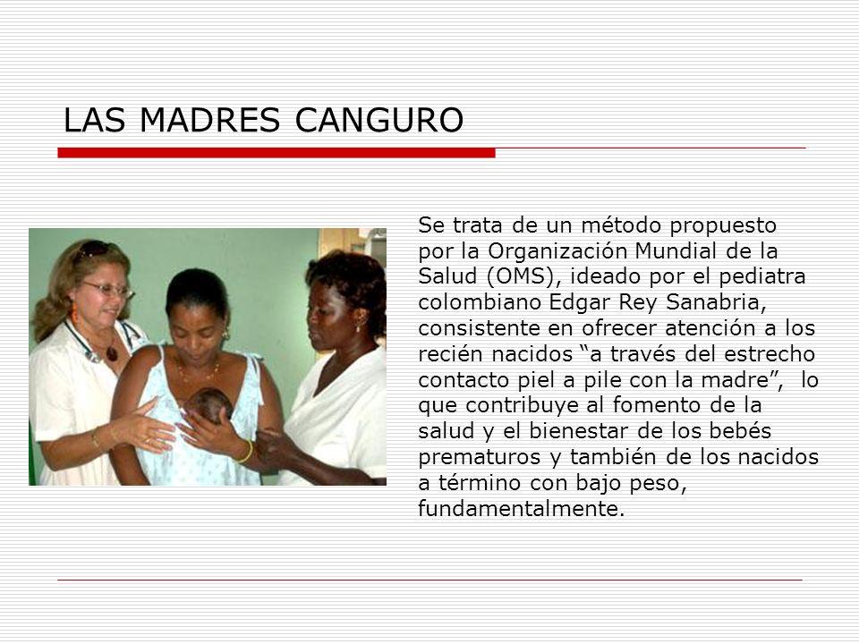 LAS MADRES CANGURO Se trata de un método propuesto por la Organización Mundial de la Salud (OMS), ideado por el pediatra colombiano Edgar Rey Sanabria