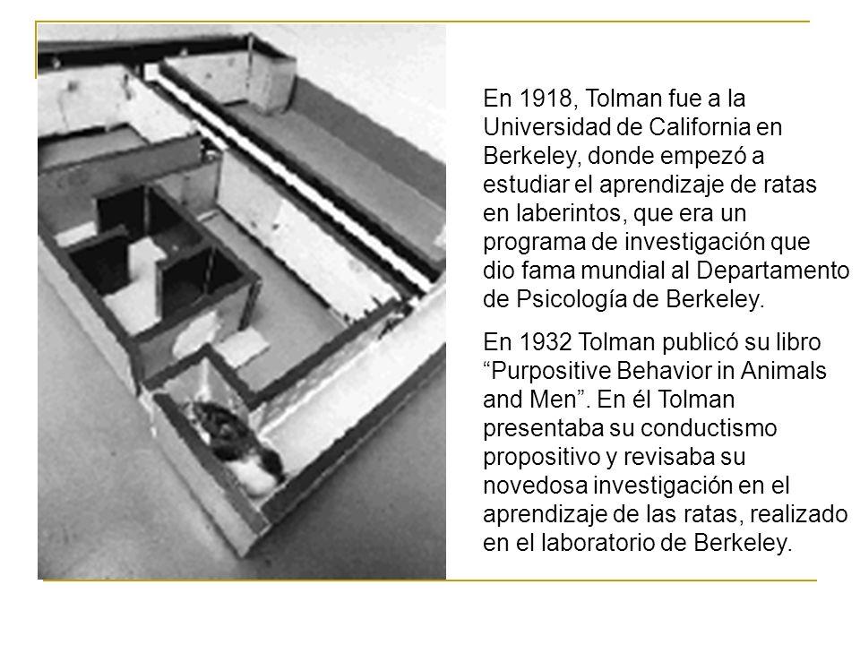 En 1918, Tolman fue a la Universidad de California en Berkeley, donde empezó a estudiar el aprendizaje de ratas en laberintos, que era un programa de